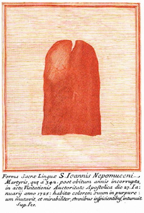 San Juan Nepomuceno / Reliquia Sagrada Lengua, S. XVIII 71yo