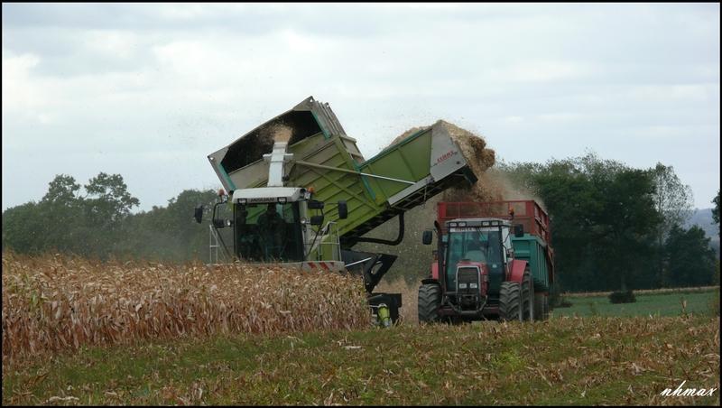 Ensilage de maïs 2011 P1100717