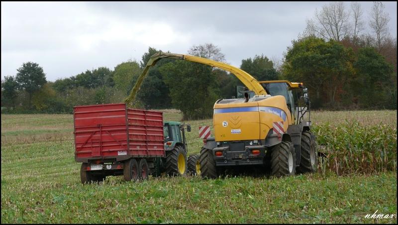 Ensilage de maïs 2011 P110065750