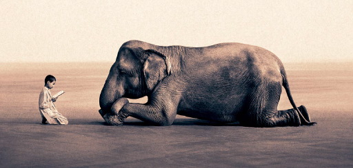 Ashes and Snow de Gregory Colbert Image01ok