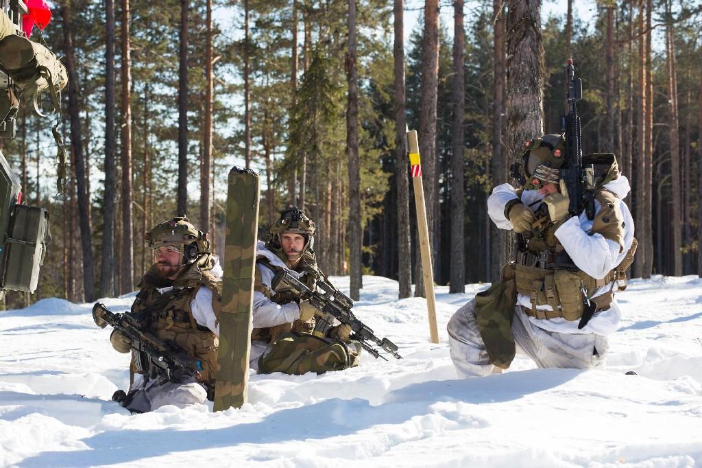 Armée norvegienne/Norwegian Armed Forces - Page 6 88644945873402419939116