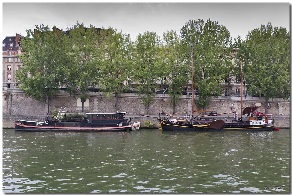 A Paris au mois d'août.  - Page 11 Jp115831024