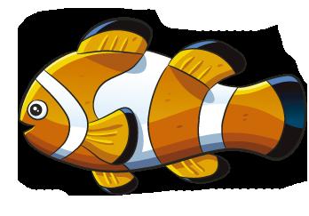 Animales del Mar XLfoyB