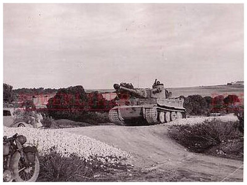 Tiger I du sPzAbt. 501 en Tunisie 1943 Tigerinr111spzabt501tun