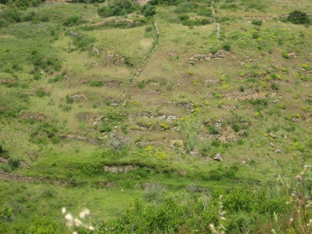 4x4 às Sardinhas no dia 20 de Junho de 2010 Img7755r