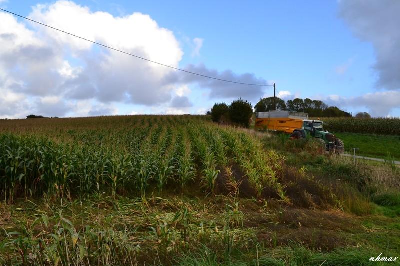 Ensilage de maïs 2011 Dsc01221600x1200