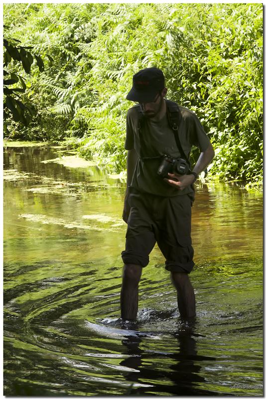 photos de la rencontre var-bretagne 11/13 août 2012 - Page 3 N15dinoap13672