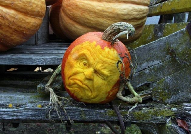 Halloween Pumpkin Pictures Bingo4f