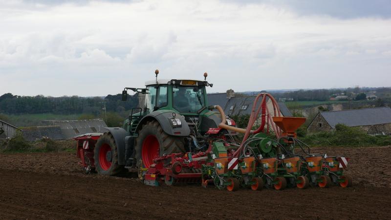 Semis de maïs 2010 P1060305