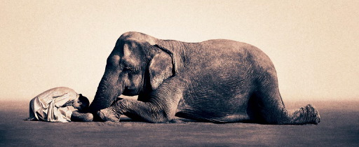 Ashes and Snow de Gregory Colbert Image03y