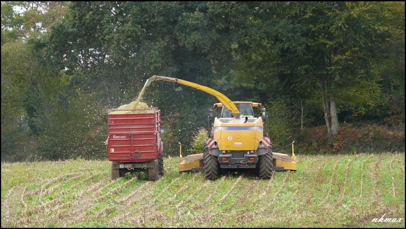 Ensilage de maïs 2011 P110065850