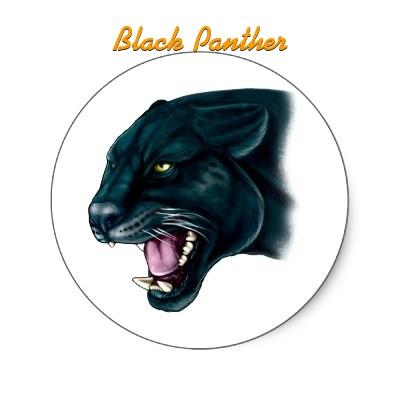 Black Panther Portugal Team