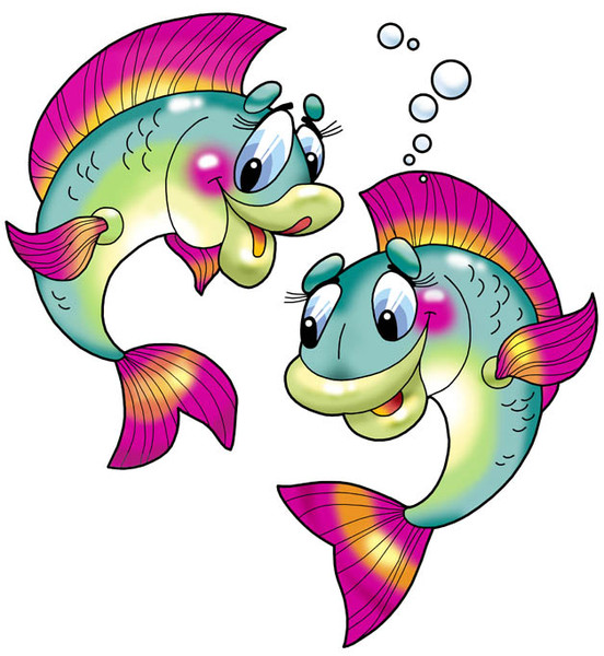 Animales del Mar Info22