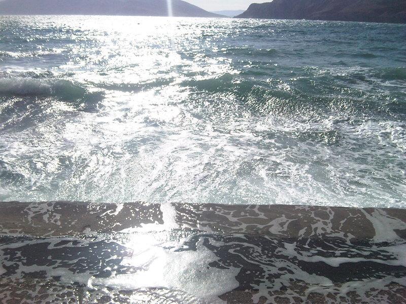 Umjetnička fotografija - čista priroda - Page 2 Img00511201010271137