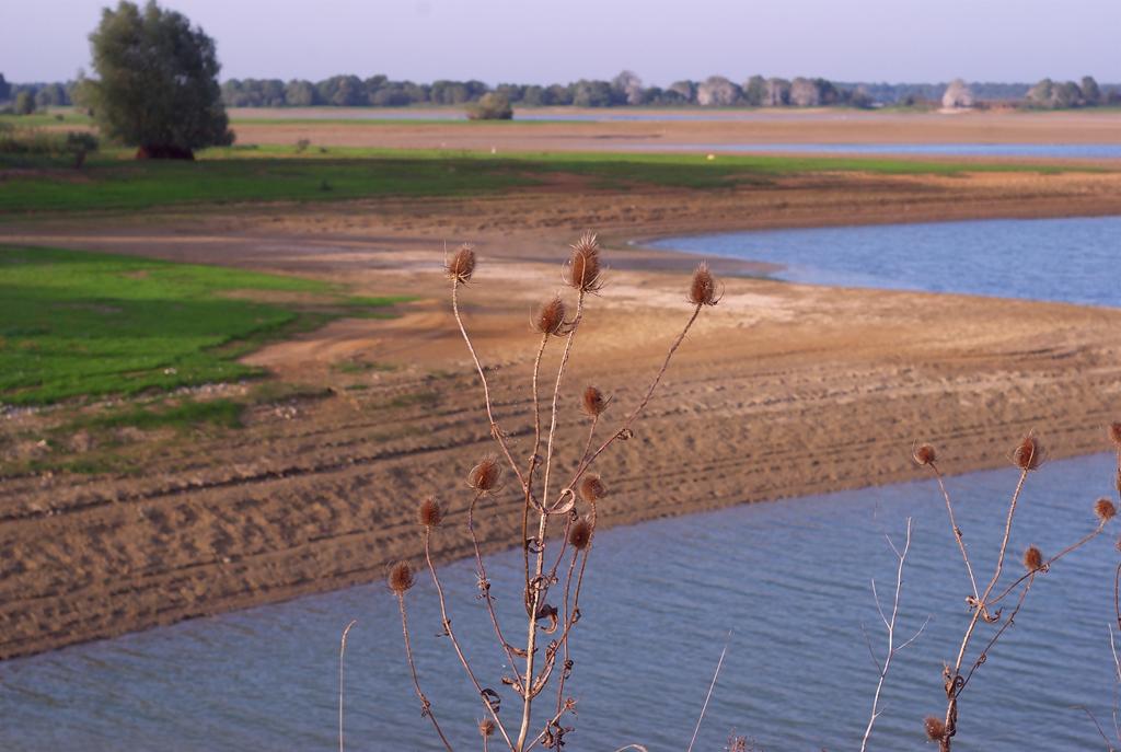 Rencontre Lac du Der 9 et 10 octobre 2010 (Sortie annuelle) - II - Page 50 Lacdudersortiepentaxfor