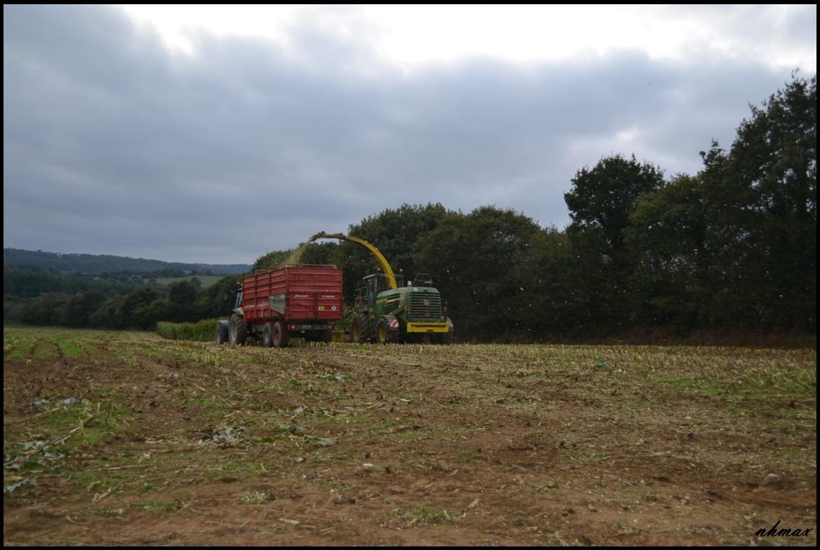 Ensilage de maïs 2011 Dsc023850