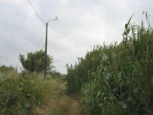 4x4 às Sardinhas no dia 20 de Junho de 2010 Img7671r