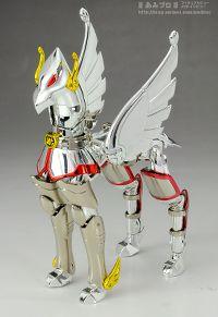 Pegasus Seya 64028138.th