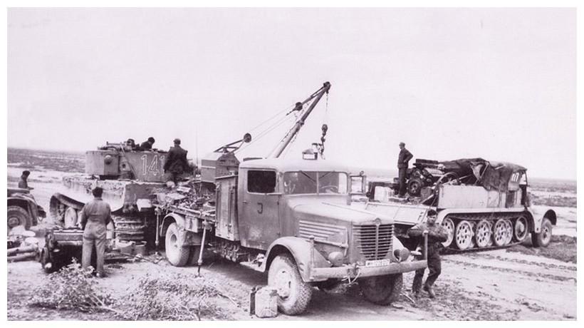 Tiger I du sPzAbt. 501 en Tunisie 1943 Tigerinr141spzabt501tig