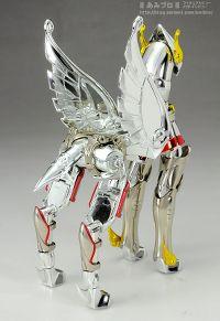 Pegasus Seya 66224057.th