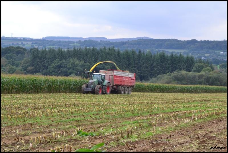 Ensilage de maïs 2011 Dsc019150