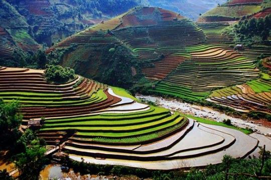 Việt Nam đẹp ngỡ ngàng trên National Geographic Images628144214