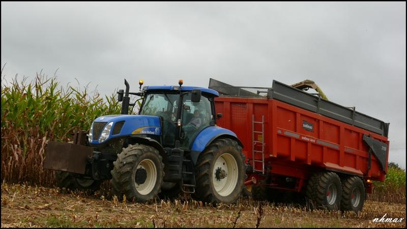 Ensilage de maïs 2011 P1100764b