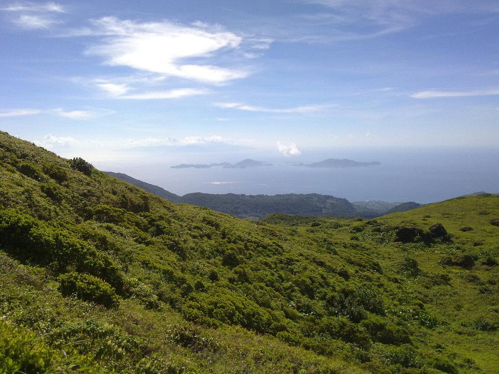 De retour de Guadeloupe, j'ai vu plein de belles choses, même des montres... 09112010739
