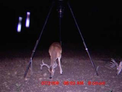 Photographie et vidéo - Artefacts, effets et méprises - Page 6 Texasmilkbottleharoldsu