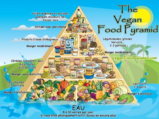 Le végétarisme  Pyramidevgtarienne