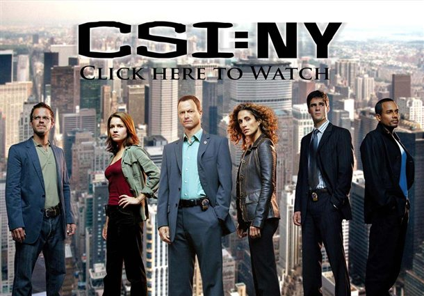 CSI New York Seasons 01-09 DVDRip 1108b