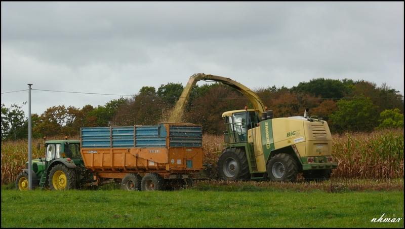 Ensilage de maïs 2011 P1100602f