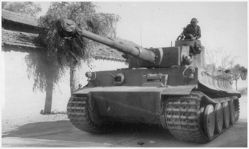 Tiger I du sPzAbt. 501 en Tunisie 1943 Unvillagetunisien