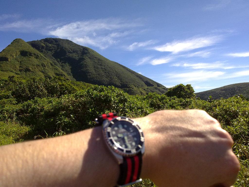 De retour de Guadeloupe, j'ai vu plein de belles choses, même des montres... 09112010732