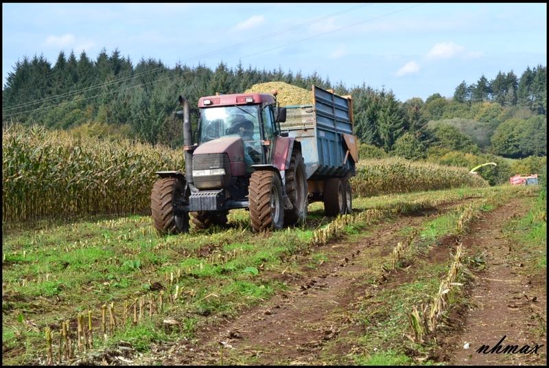 Ensilage de maïs 2011 Dsc0151nj