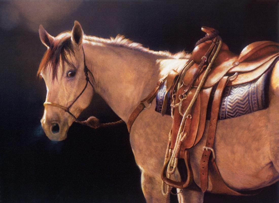 Najlepši konji na svetu - Page 4 YwVw5A