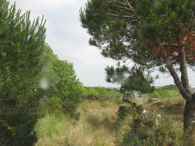 4x4 às Sardinhas no dia 20 de Junho de 2010 Img7666r