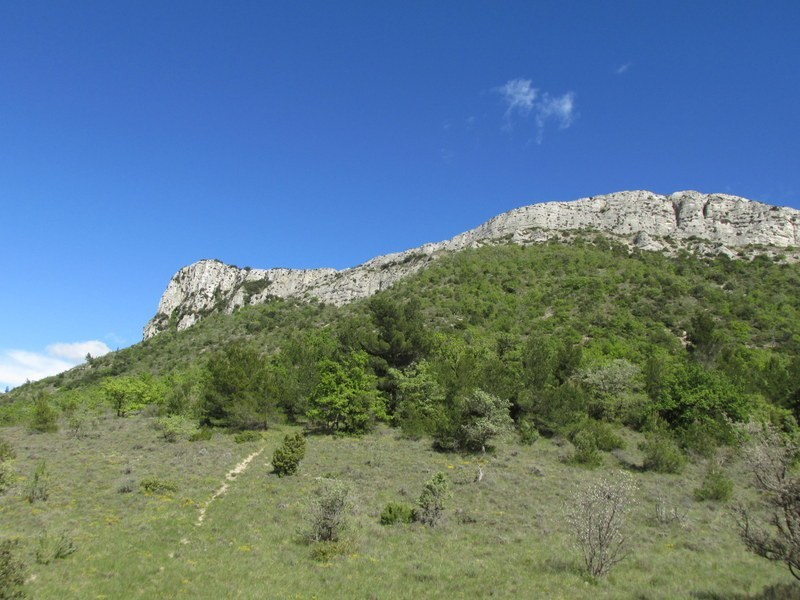 Pourrières - L'Aubanede - Jeudi 1er mai 2014 W5s1