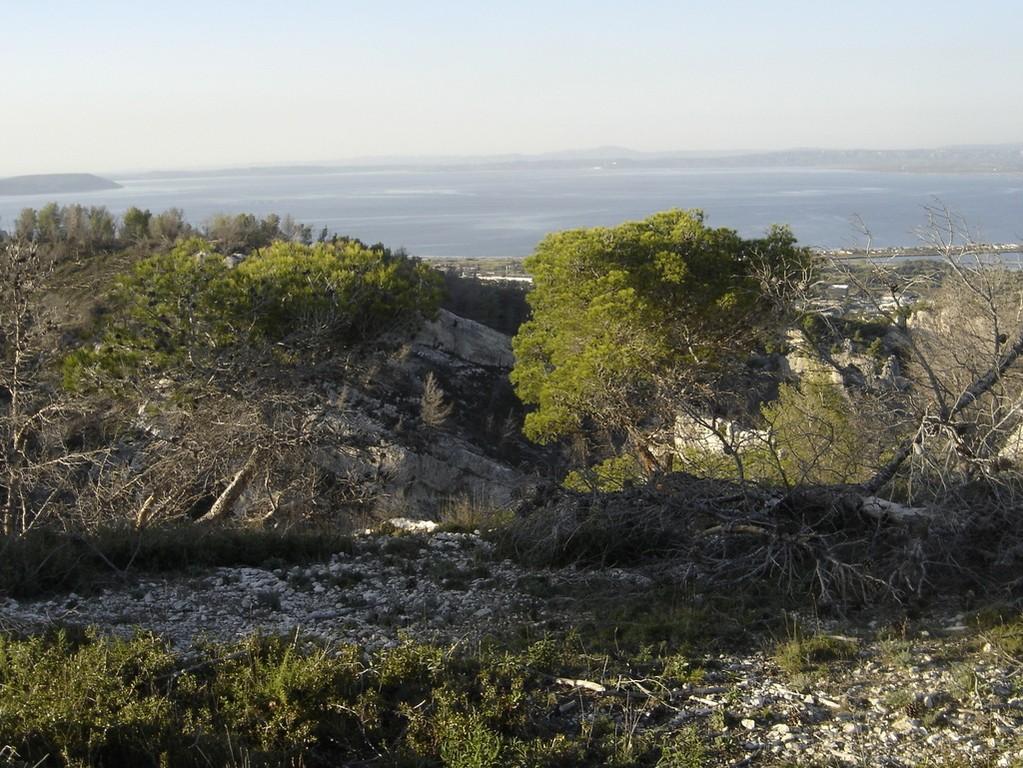 Chateauneuf les Martigues - Jeudi 25 octobre 2018 Q55G2g