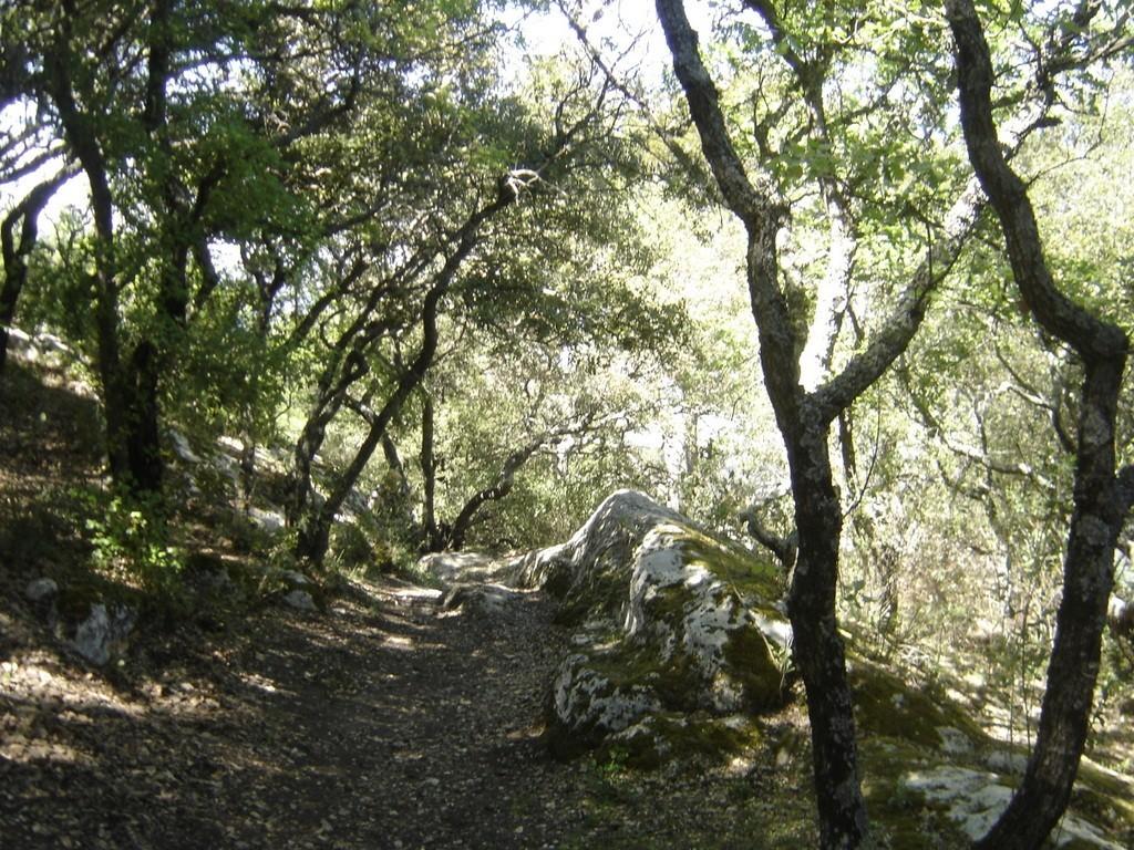 La Roque d'Anthéron - jeudi 26 avril 2018 9JrDRz