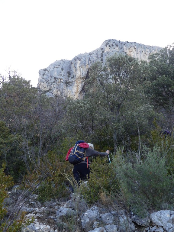 Verdon-Ourbes-Plein Voir-Jeudi 5 avril 2018 NTpq2t