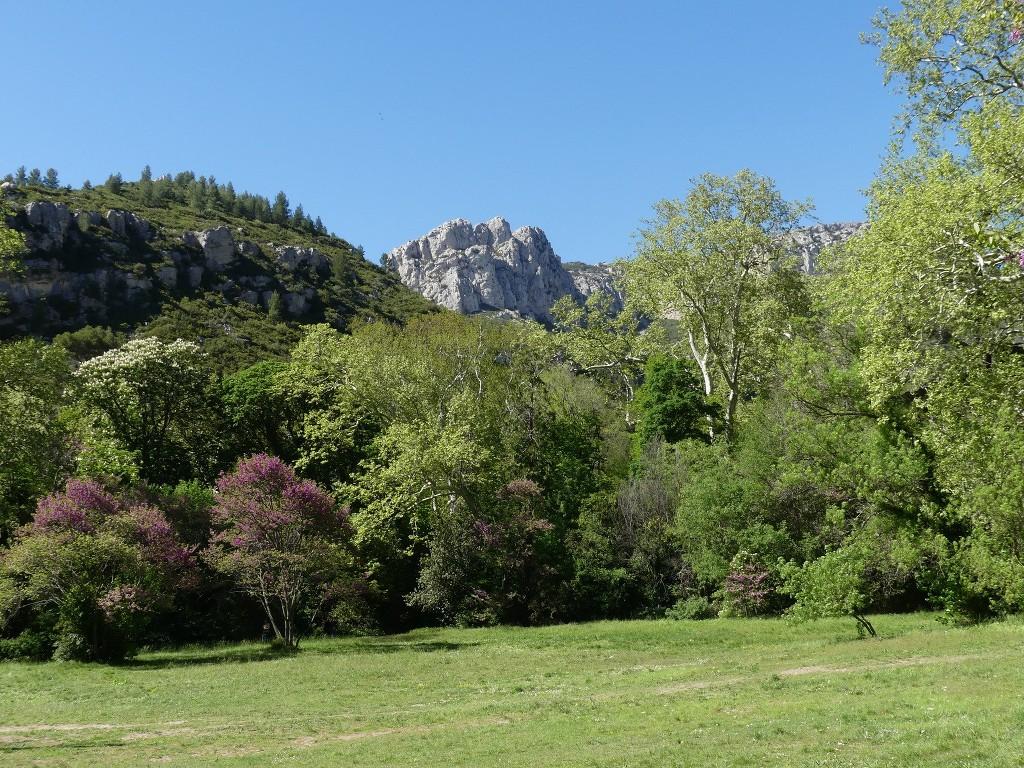 St Pons-Le col de Bertagne-Jeudi 26 avril 2018 P0Re73