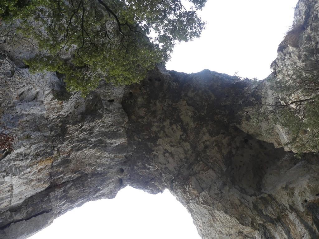 Lubéron-Vallon de l'Arc-Arche du Portalas-Jeudi 9 novembre 2017 Qe26Gw