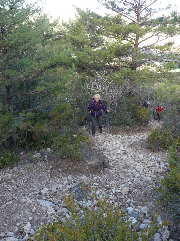 Verdon-Ourbes-Plein Voir-Jeudi 5 avril 2018 SHbiCL