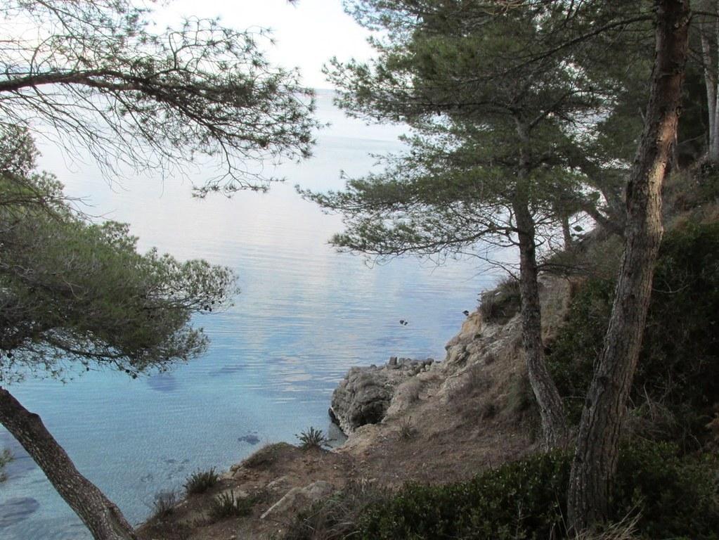 Martigues - Parc de Figuerolles - Jeudi 29 mars 2018 W0hBy7
