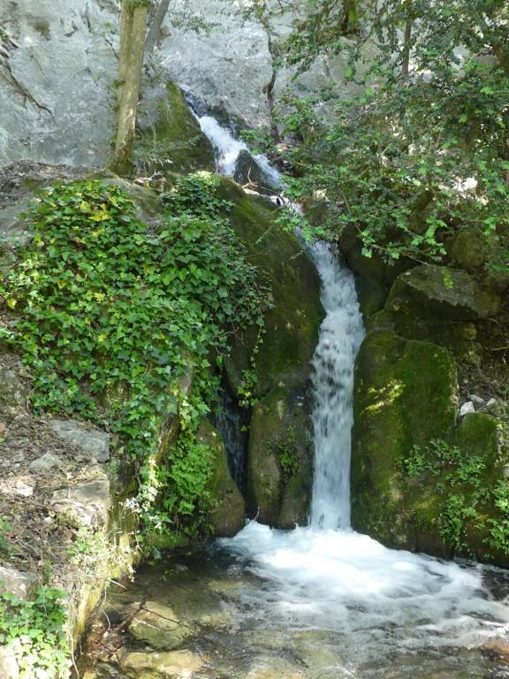 St Pons-Le col de Bertagne-Jeudi 26 avril 2018 XkVfCK