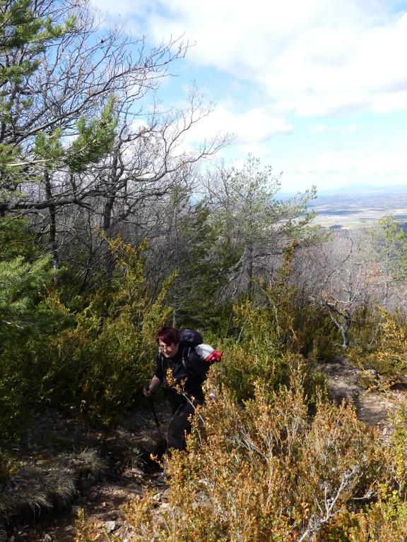 Verdon-Ourbes-Plein Voir-Jeudi 5 avril 2018 B9JgW7