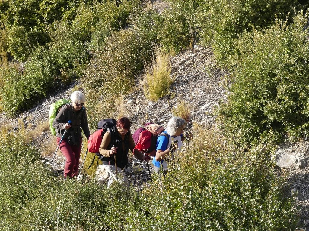 Lubéron-Vallon de l'Arc-Arche du Portalas-Jeudi 9 novembre 2017 IzE2BZ