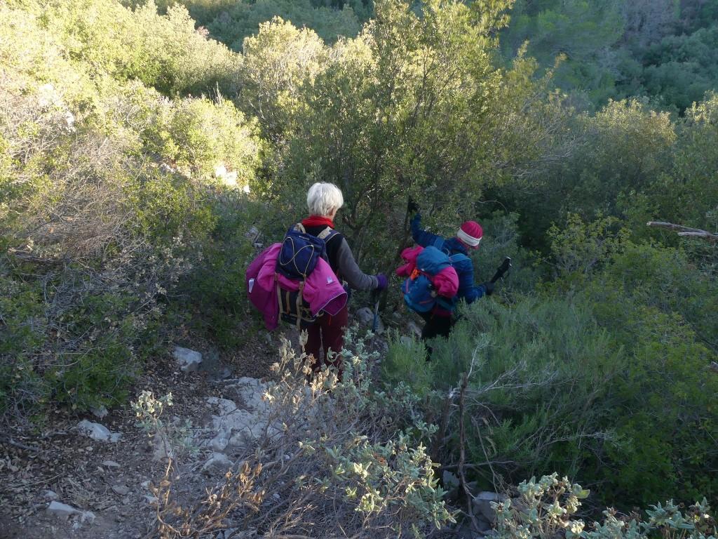 Garlaban-Pichauris-Plateau de l'Aroumi-Jeudi 30 novembe 2017 Jk0VJc