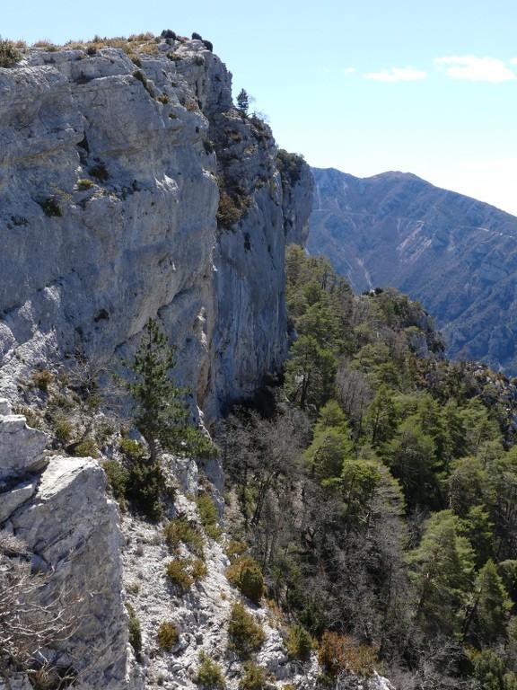 Verdon-Ourbes-Plein Voir-Jeudi 5 avril 2018 Ux8njE